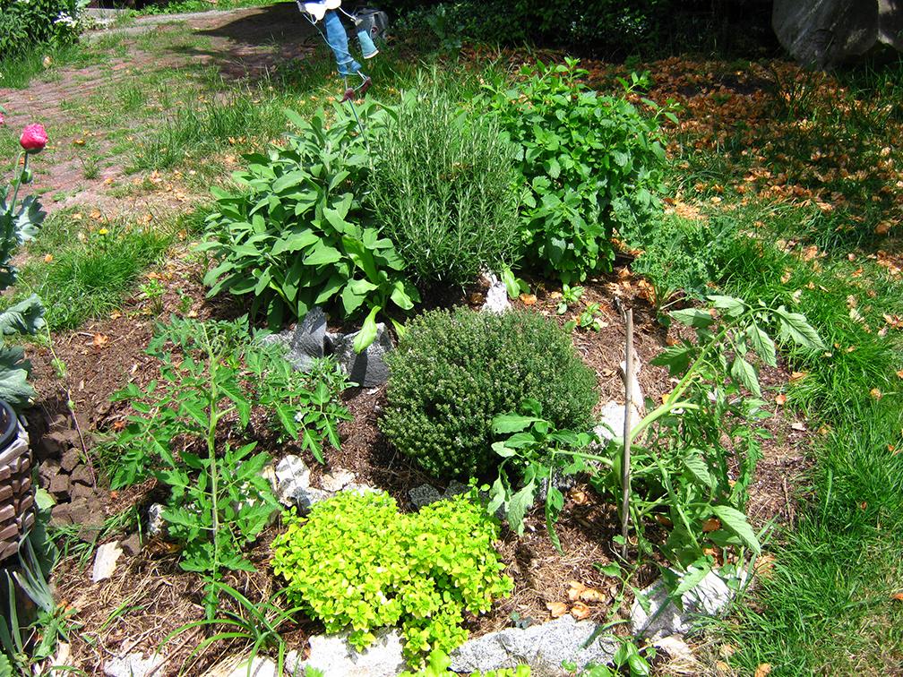 how to build a small garden