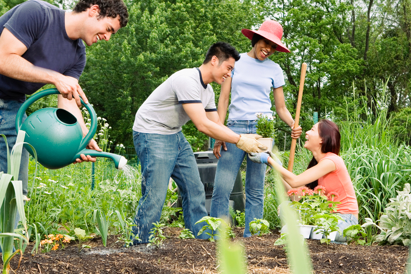Thoughts on self sufficient gardening