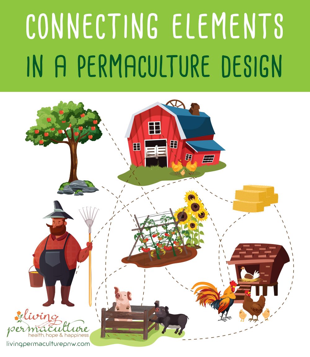 making connections in a permaculture design