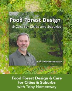 food forest design Toby Hemenway