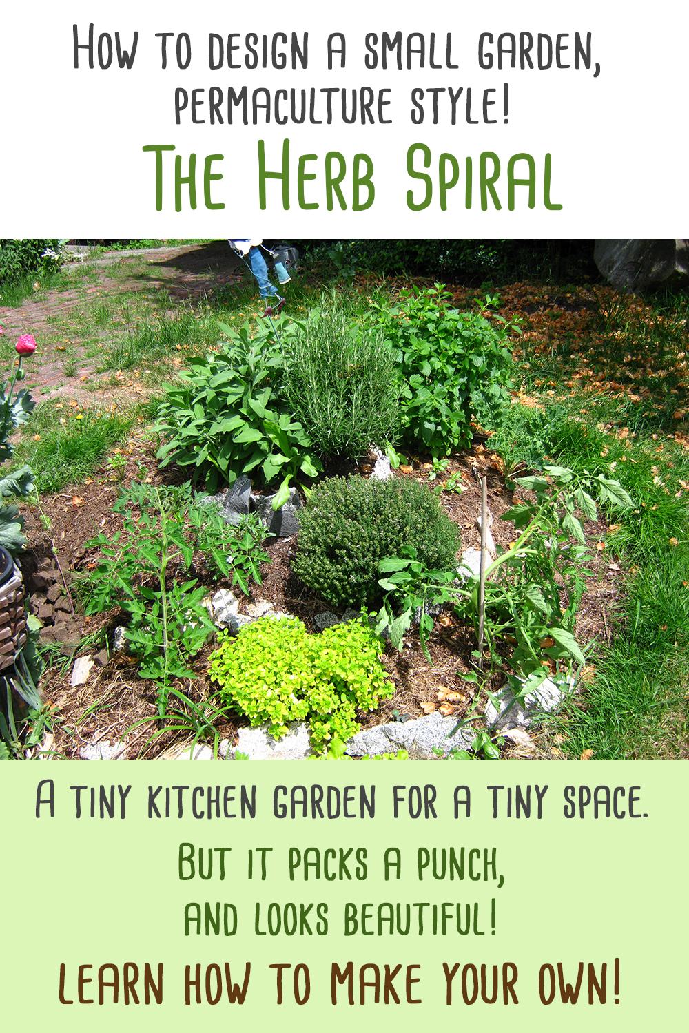 small garden permaculture herb spiral