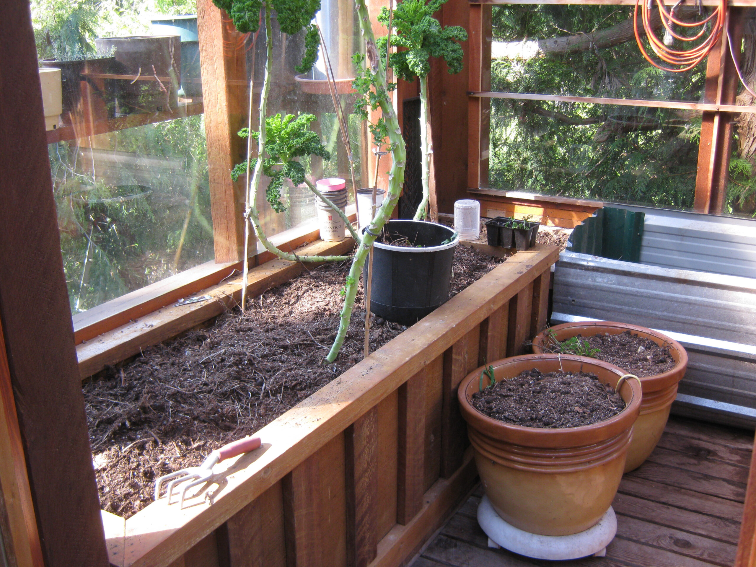 planters in the greenhouse