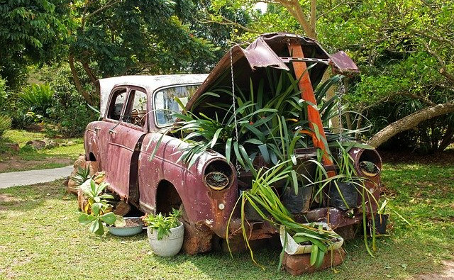 old car used as a planter