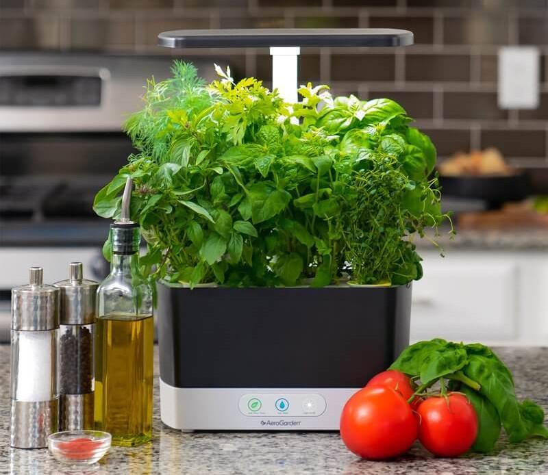 aerogarden hydroponics