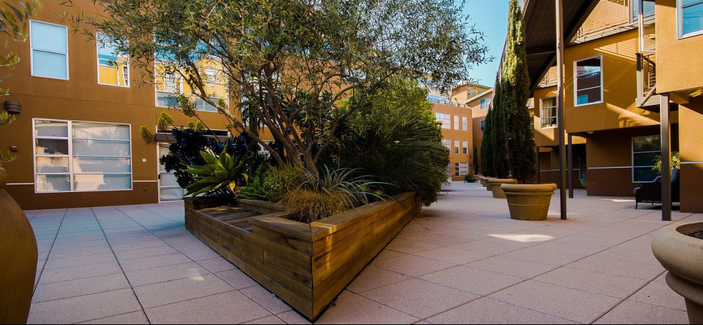 courtyard planter